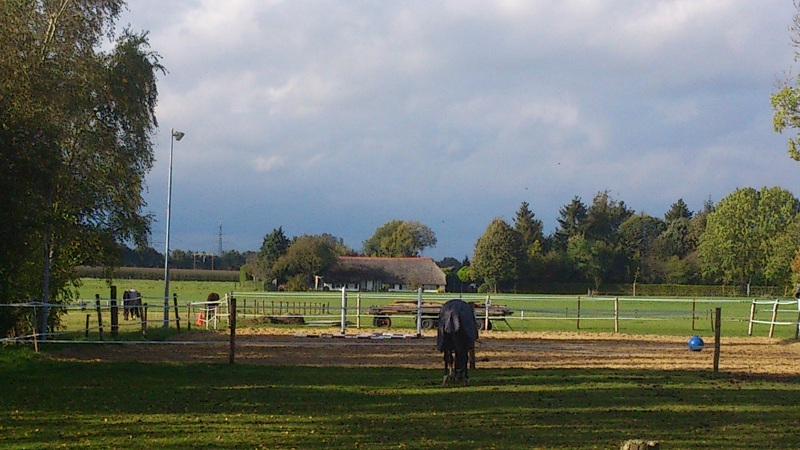 Paardenbak 5